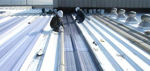 屋根塗装工事 スカイライトの交換用画像